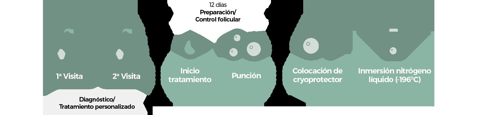 Procedimiento Cyro óvulos