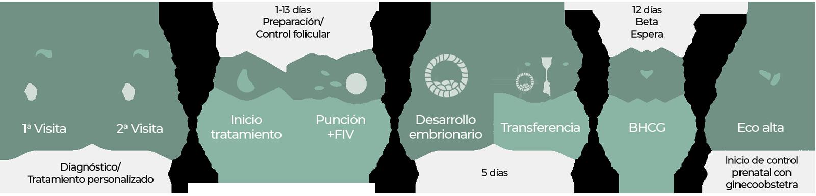 Proceso Fertilización in Vitro en Centro Fecundar