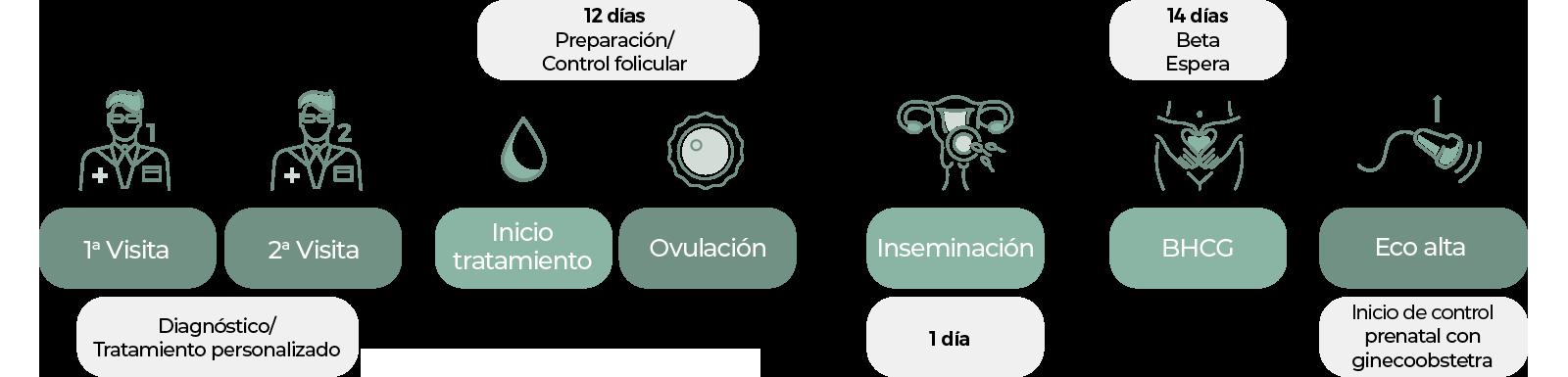 artificial insemination procedure at Centro Fecundar Costa Rica